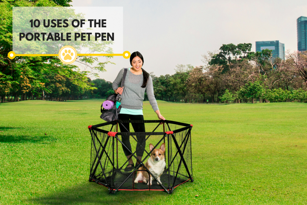 10 Uses For the Portable Pet Pen