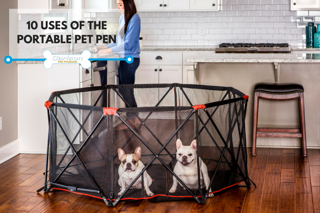 Uses for the Portable Pet Pen