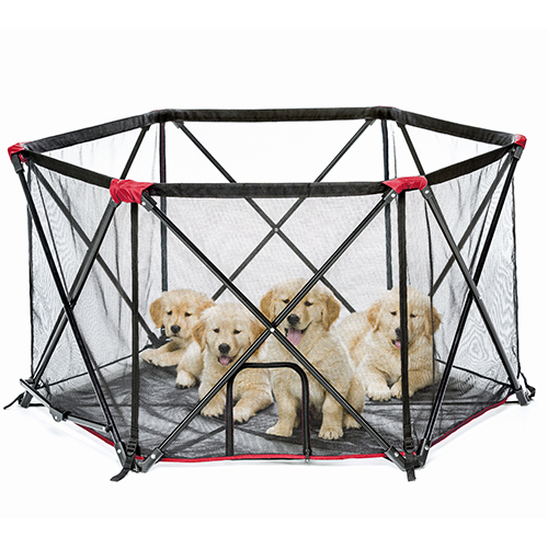 carlson portable pet pen