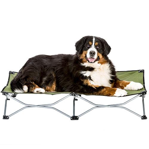 carlson large green dog cot