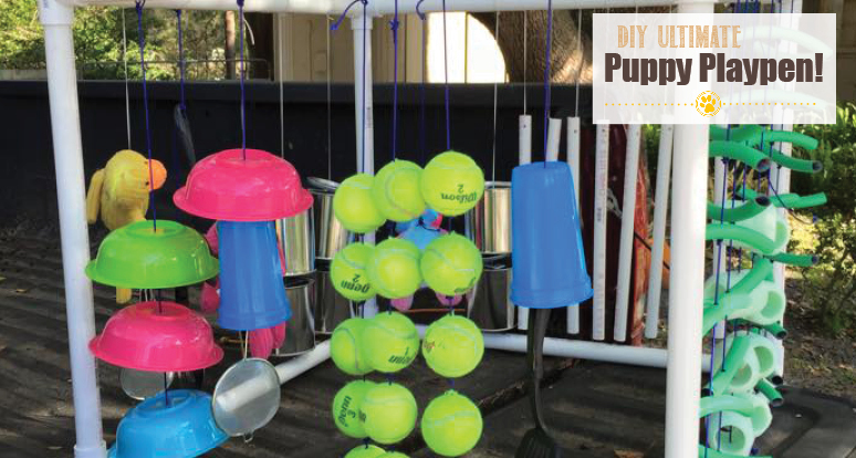 puppy playpen