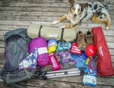 what four influencers bring when camping with their dog