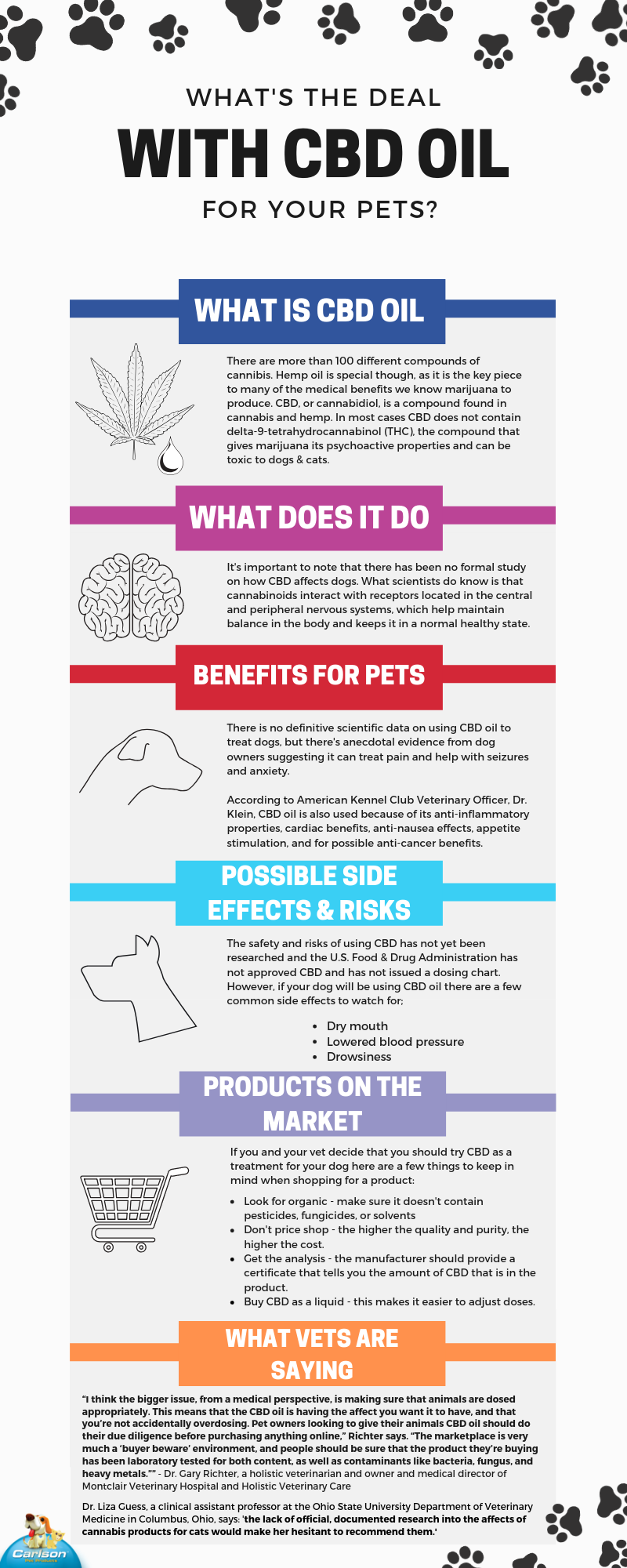CBD oil for pets info graphic