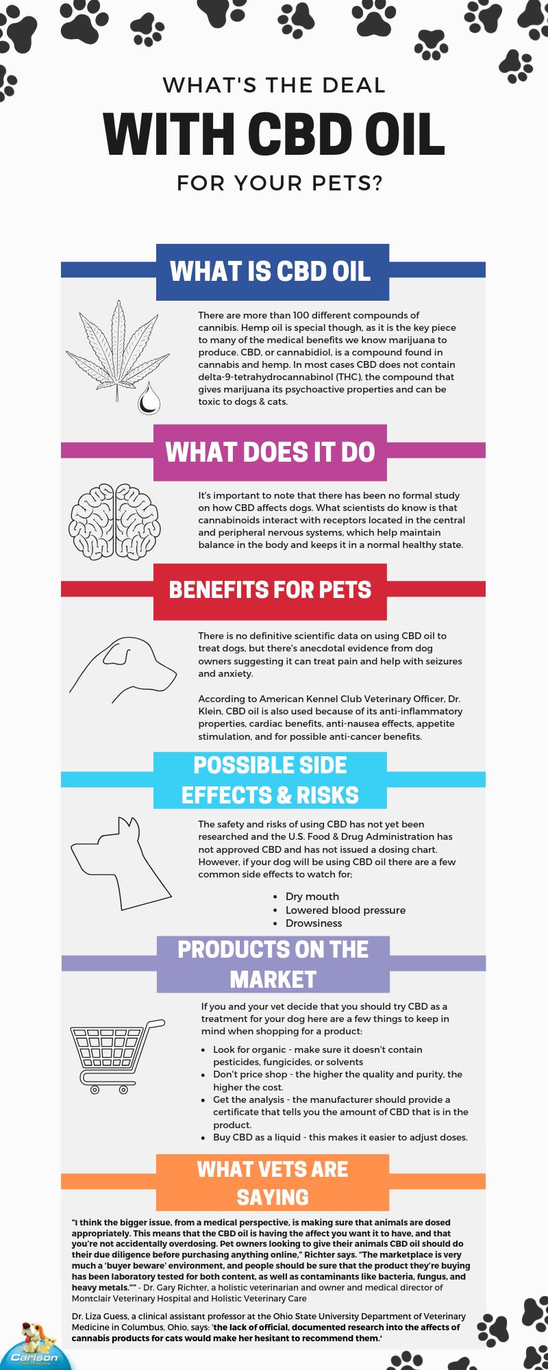 CBD oil for pets info graphic