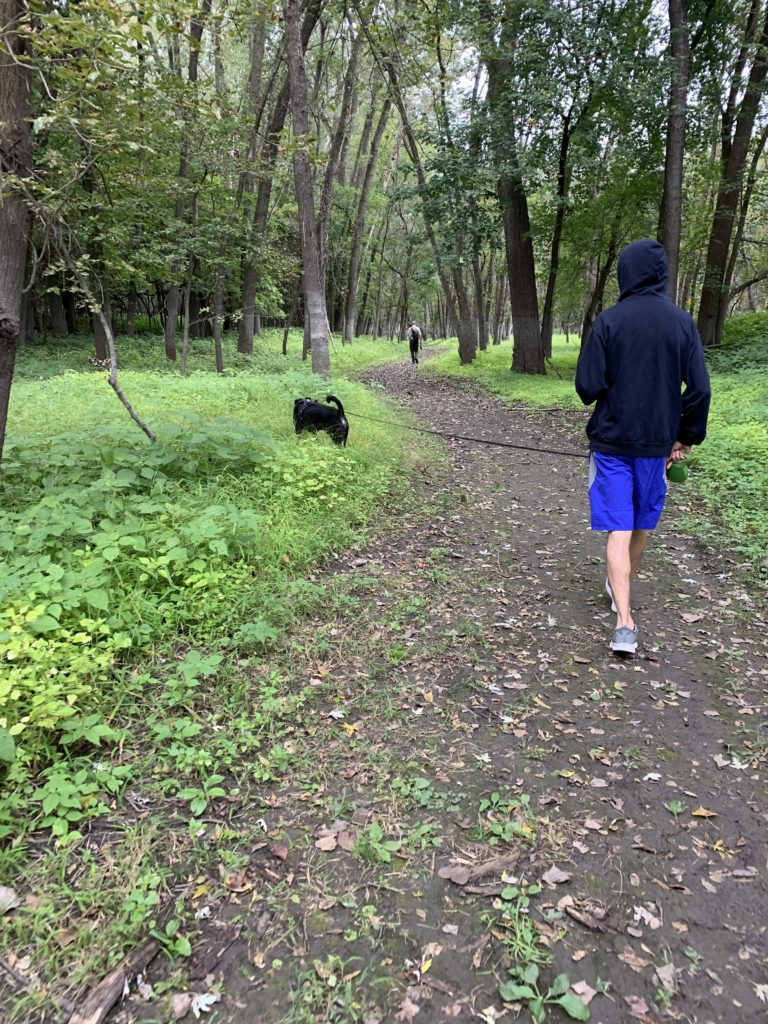 Man walking dog on a trail in the woods.