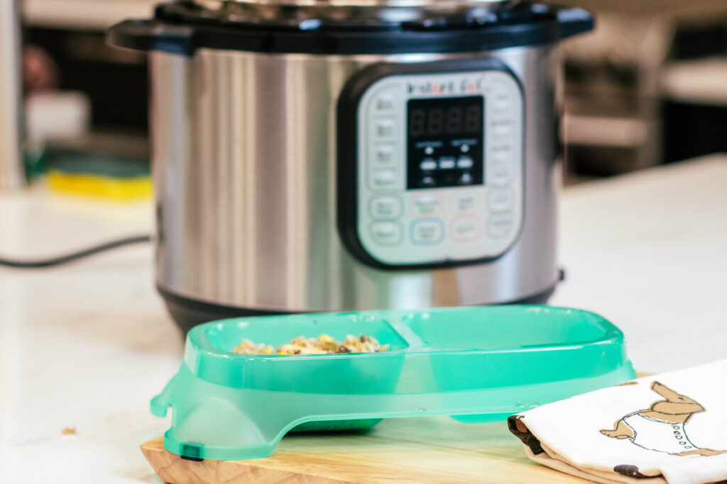Instant pot in the background with a green double dog dish in front with homemade dog food on one side