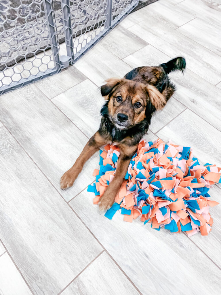 Dog laying on floor with a dog snuffle mat