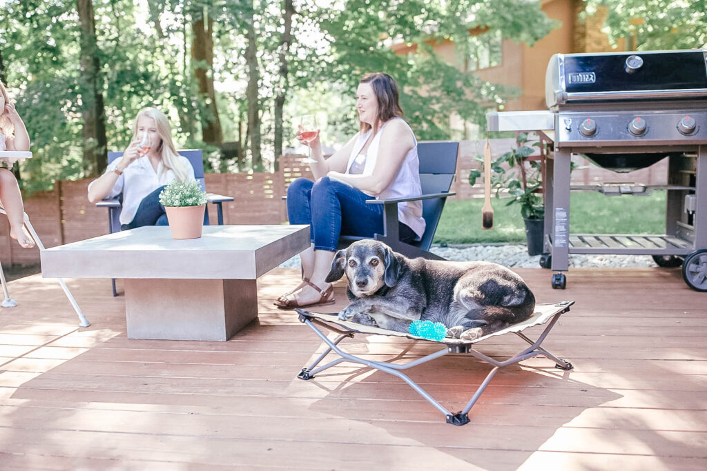 Dog in yard on patio laying on cot while humans sit at a table and drink wine