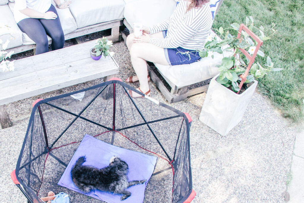 Two people out on a patio in the yard with their dog in a pet pen to stop from jumping