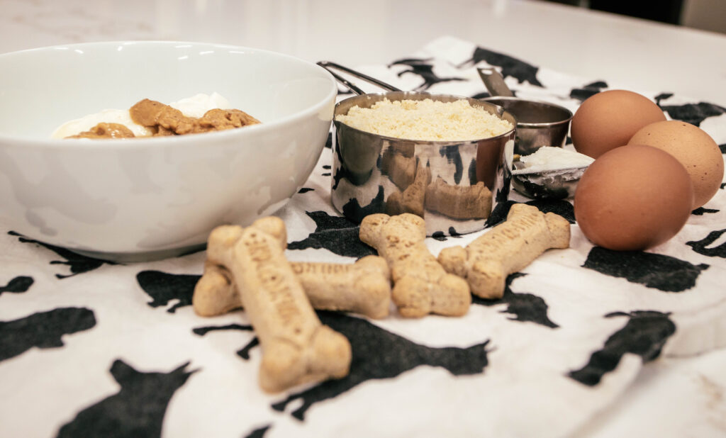 dog biscuits with other baking ingredients like eggs on kitchen counter