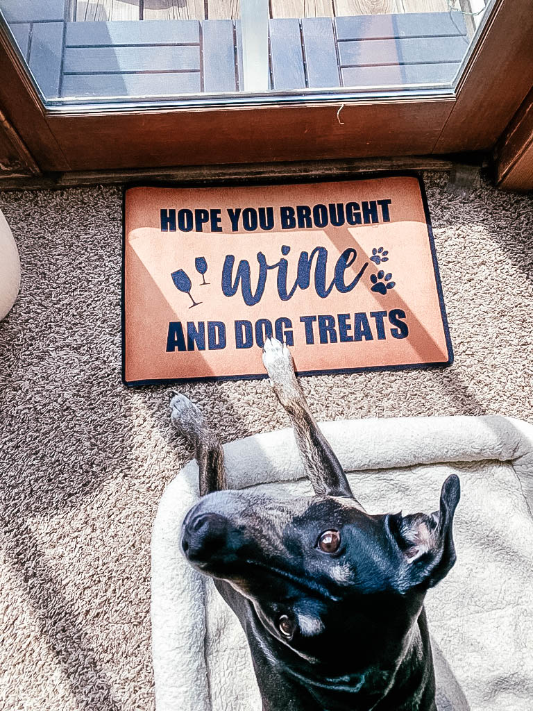 Dog on pet bed with paw on door mat that says 'Hope you brought wine and dog treats'