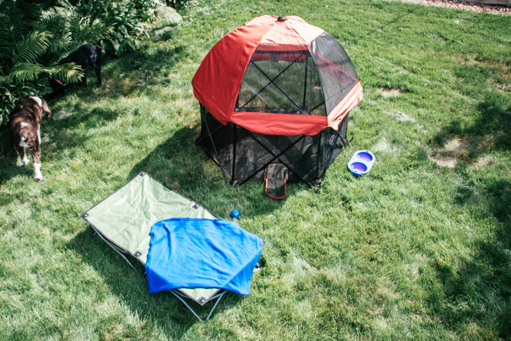 overhead shot of pet pen and dog cot outdoors at RV camping spot with dogs walking by