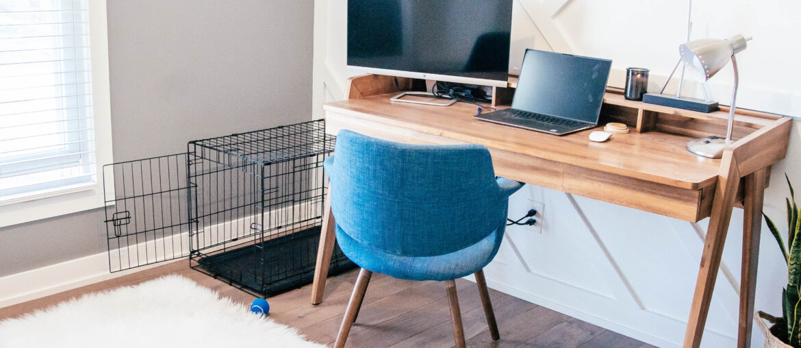 Pet Safety in the Workplace
