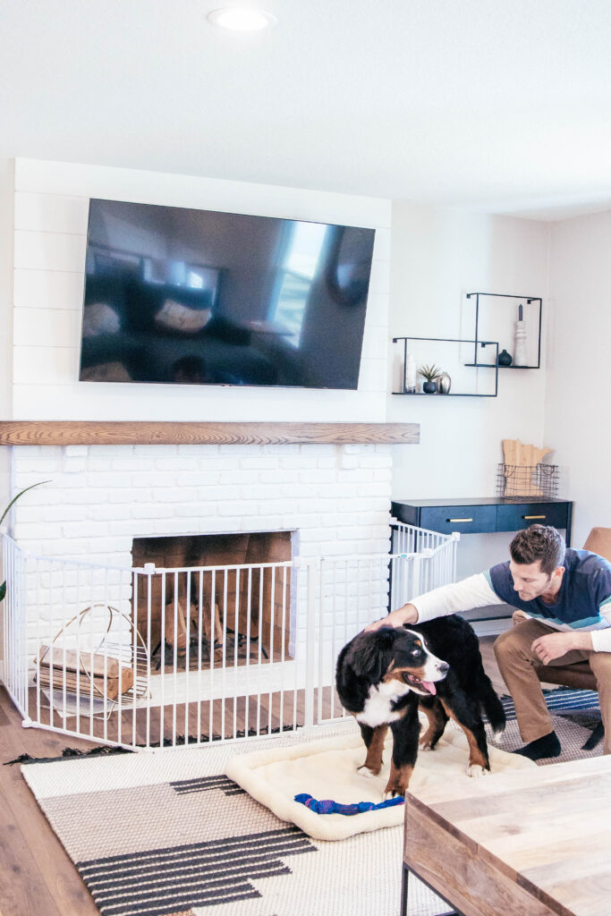 man sitting in chair petting dog in living room